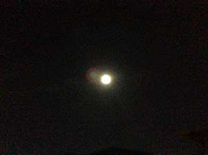 中秋の名月「十五夜」