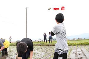 obako_country_20150615_02