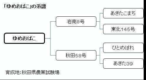 yumeobako11