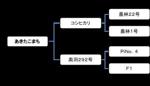jangomai-genealogy