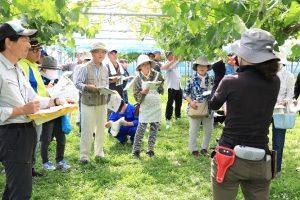 部会員園地で栽培管理を学ぶ参加者