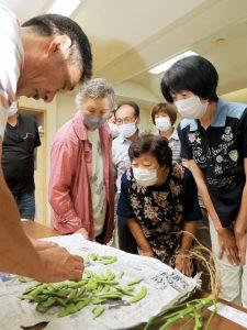 写真=収穫後の枝豆を見本に出荷規格を確認する参加者
